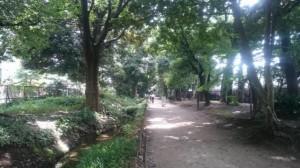 新宿御苑02